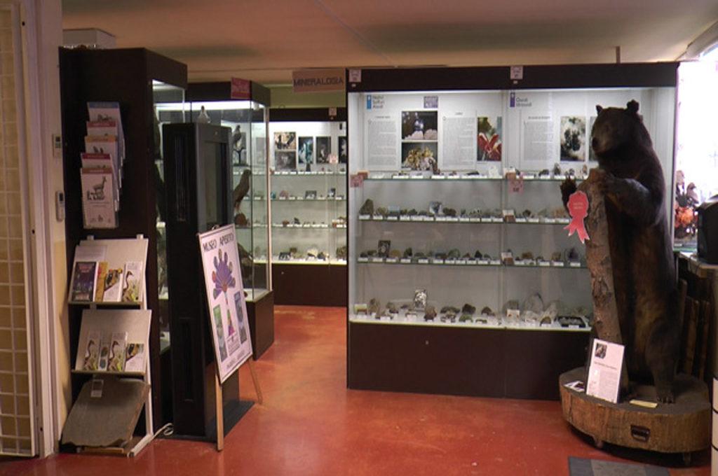 Museo Civico di Scienze Naturali di Lovere